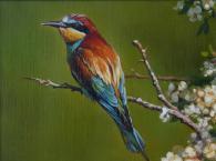 Картина с изображението на пчелояд