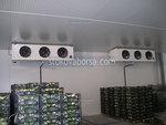 Производство на хладилни камери